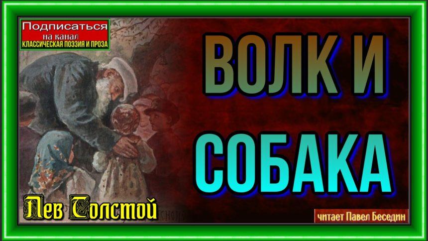 Волк и собака —Лев Толстой — читает Павел Беседин