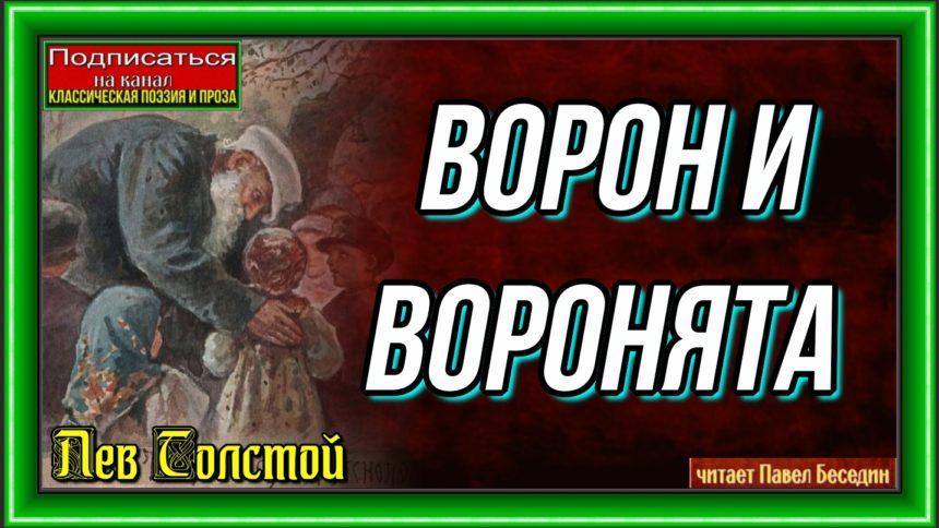 Ворон и воронята Лев Толстой читает Павел Беседин