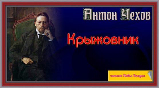 Крыжовник. антон чехов рассказы читает Павел беседин