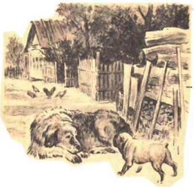 Играющие собаки— Константин Ушинский