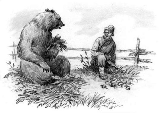 Мужик поехал в лес репу сеять. Пашет там да работает. Пришел к нему медведь: — Мужик, я тебя сломаю. — Не ломай меня, медведюшка, лучше давай вместе репу сеять. Я себе возьму хоть корешки, а тебе отдам вершки. — Быть так,— сказал медведь.— А коли обманешь, так в лес ко мне хоть не езди. Сказал и ушел в дуброву. Репа выросла крупная. Мужик приехал осенью копать репу. А медведь из дубровы вылезает: — Мужик, давай репу делить, мою долю подавай. — Ладно, медведюшка, давай делить: тебе вершки, мне корешки. Отдал мужик медведю всю ботву. А репу наклал на воз и повез в город продавать. Навстречу ему медведь: — Мужик, куда ты едешь? — Еду, медведюшка, в город корешки продавать. — Дай-ка попробовать — каков корешок? Мужик дал ему репу. Медведь, как съел: — А-а! — заревел.— Мужик, обманул ты меня! Твои корешки сладеньки. Теперь не езжай ко мне в лес по дрова, а то заломаю. На другой год мужик посеял на том месте рожь. Приехал жать, а уж медведь его дожидается: — Теперь меня, мужик, не обманешь, давай мою долю. Мужик говорит: — Быть так. Бери, медведюшка, корешки, а я себе возьму хоть вершки. Собрали они рожь. Отдал мужик медведю корешки, а рожь наклал на воз и увез домой. Медведь бился, бился, ничего с корешками сделать не мог. Рассердился он на мужика, и с тех пор у медведя с мужиком вражда пошла.