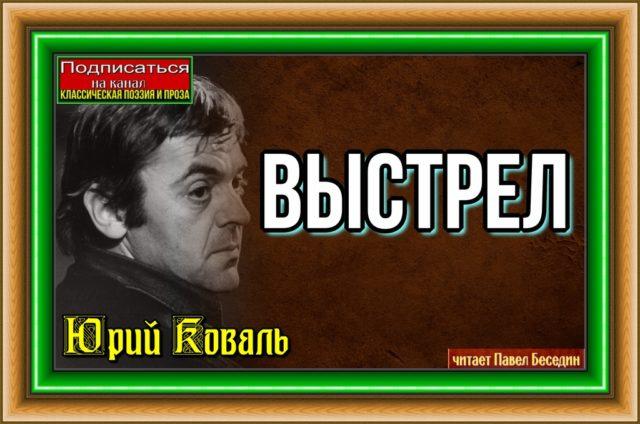 Выстрел Юрий Коваль—Рассказы детям —читает Павел Беседин