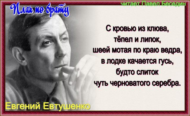 Плач по брату— Евгений Евтушенко — читает Павел Беседин