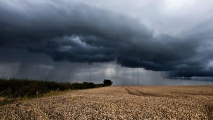Тучи дождливые нивы не скошены. читает павел беседин