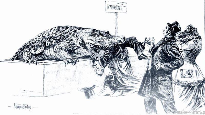 Крокодил. — Фёдор Достоевский