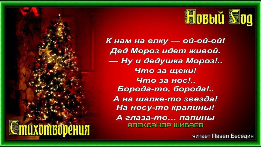 Дед Мороз —Александр Шибаев—читает Павел Беседин