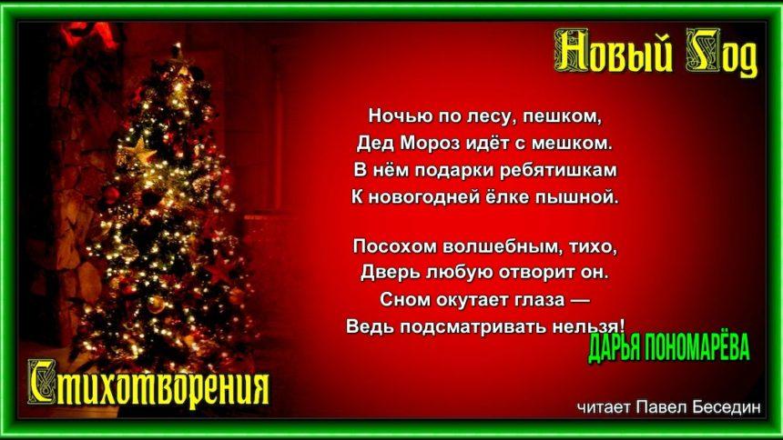 Дед Мороз идёт с мешком —Дарья Понаморёва—читает Павел Беседин