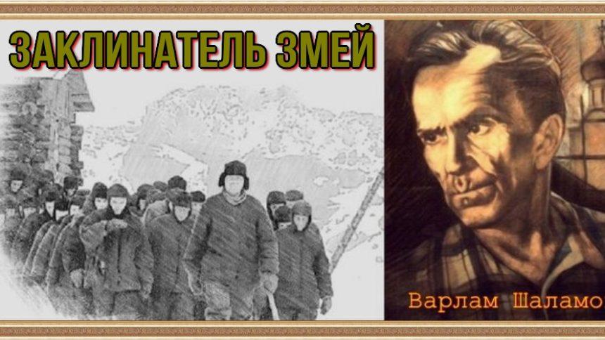 Заклинатель змей Варлам Шаламов читает Павел Беседин