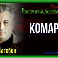 Komarov YUrij Nagibin chitaet Pavel Besedin