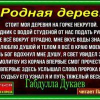 Rodnaya derevnya Gabdula Dukaev. chitaet Pavel Besedin