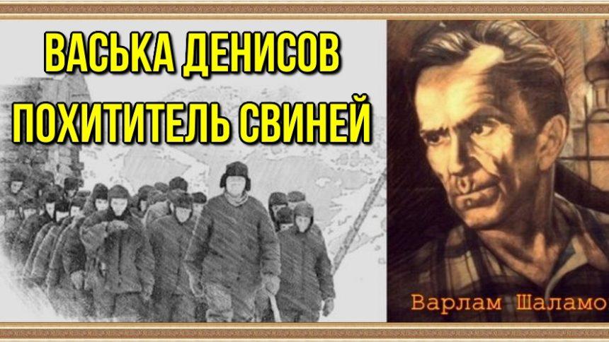 Васька Денисов похититель свиней Варлам Шаламов читает Павел Беседин