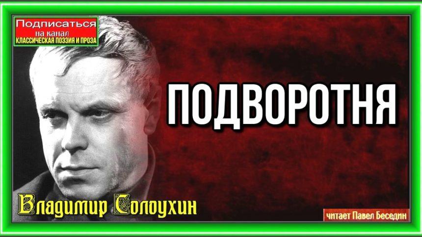 Подворотня— Владимир Солоухин