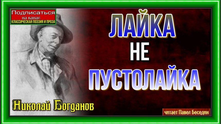 Лайка — не пустолайка—Николай Богданов— читает Павел Беседин