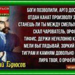 Орфей и Органавты, Валерий Брюсов , Русская Поэзия , читает Павел Беседин